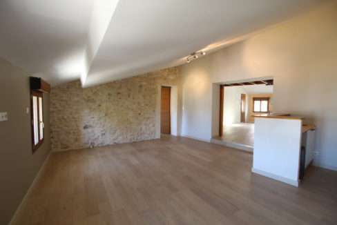 loft salon mur pierre