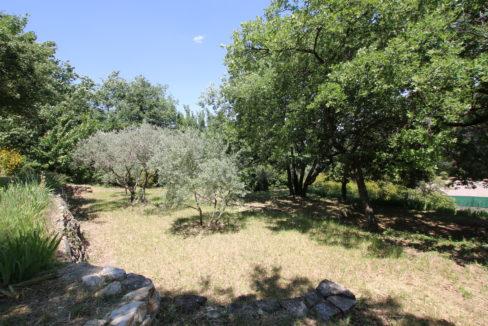 Malaucene maison jardin oliviers