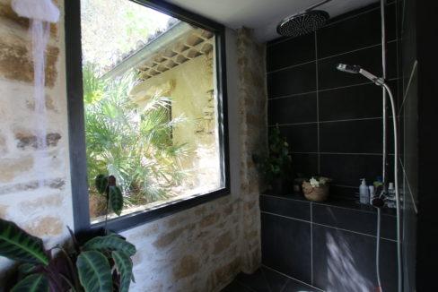 La Roque sur Pernes propriété avec vue douche