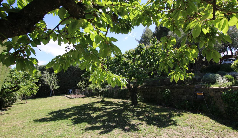 La Roque sur Pernes propriété avec vue jardin cerisiers